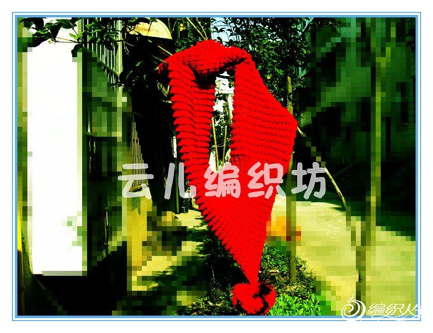 DSC05800_副本.jpg