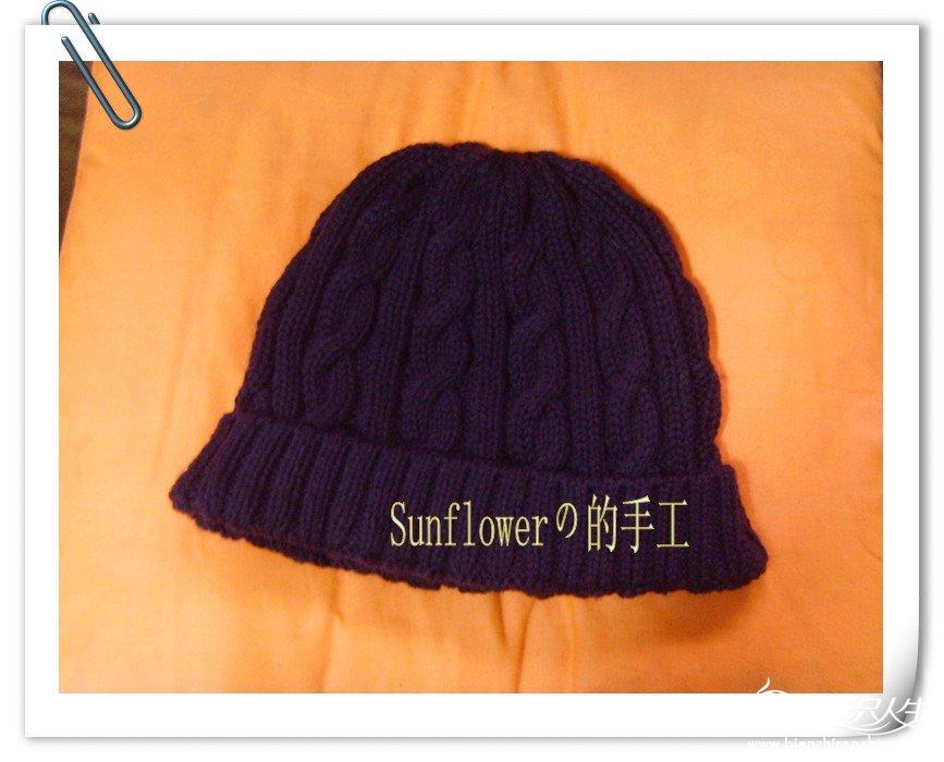 SNV33939_副本_conew1.jpg
