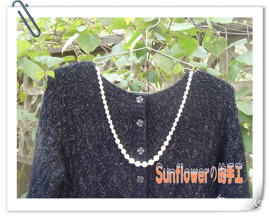 SNV34100_副本_conew1.jpg