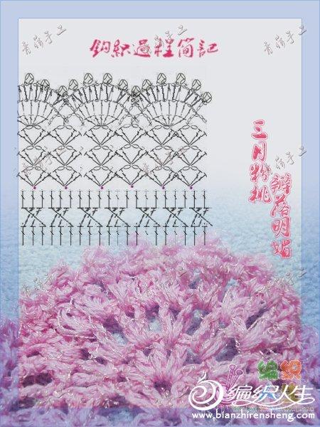 扇子花.jpg