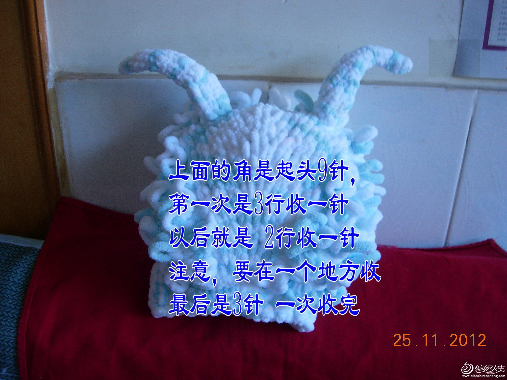 DSCN9818_副本2.JPG