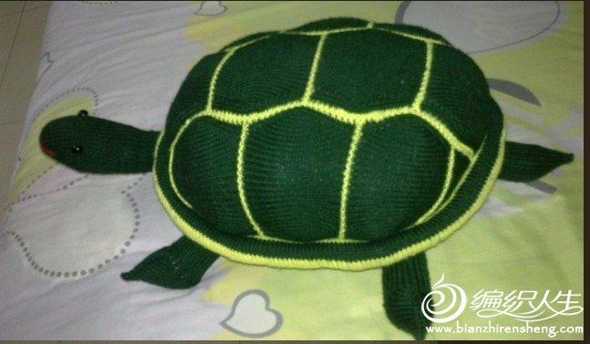 乌龟1.jpg