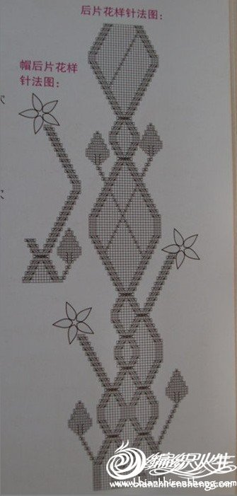 藤蔓后片图.jpg