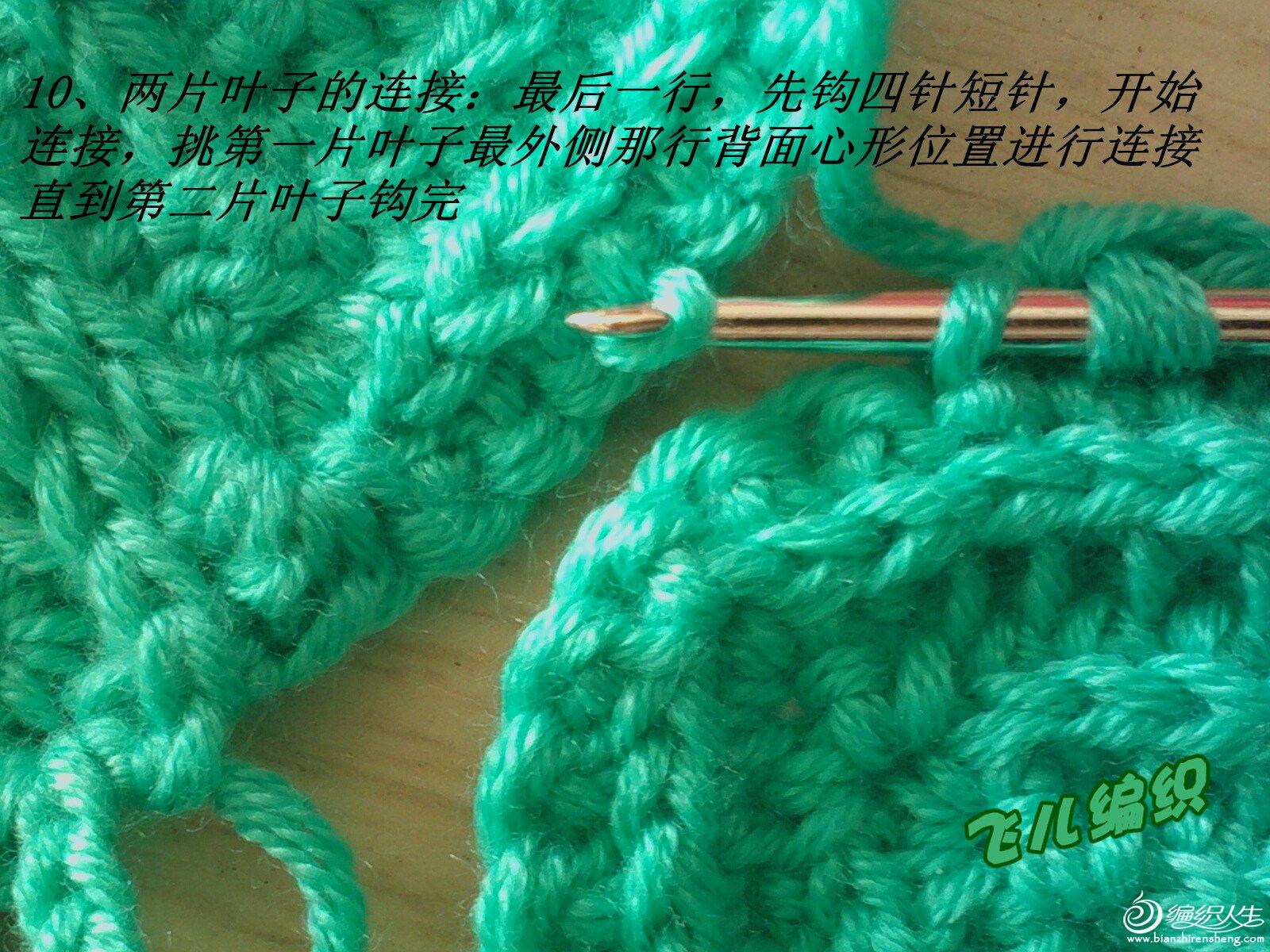 IMG1519_副本.jpg