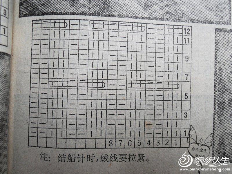 SDC12399_副本.jpg