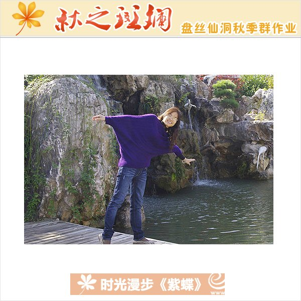 紫-时光漫步-紫蝶2.jpg