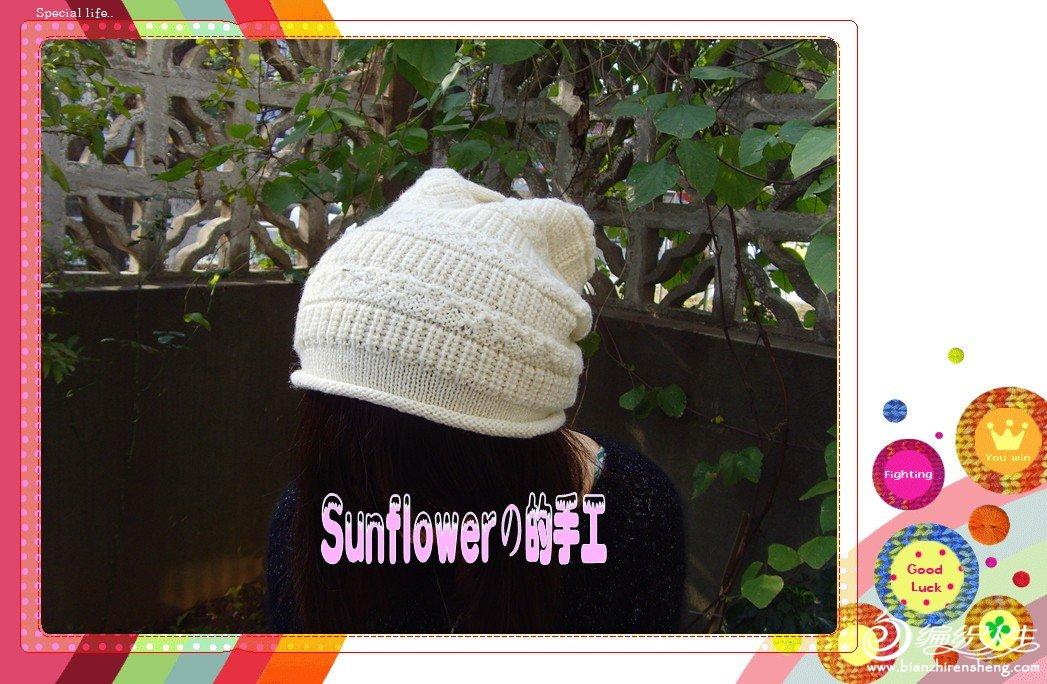 SNV34053_副本_conew1.jpg