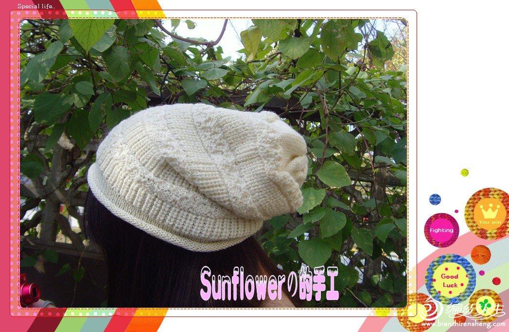 SNV34061_副本_conew1.jpg