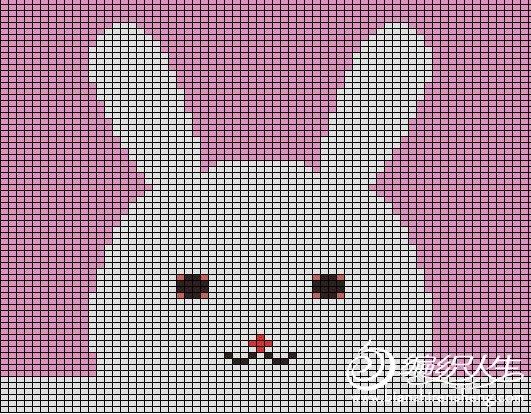 兔子头.JPG