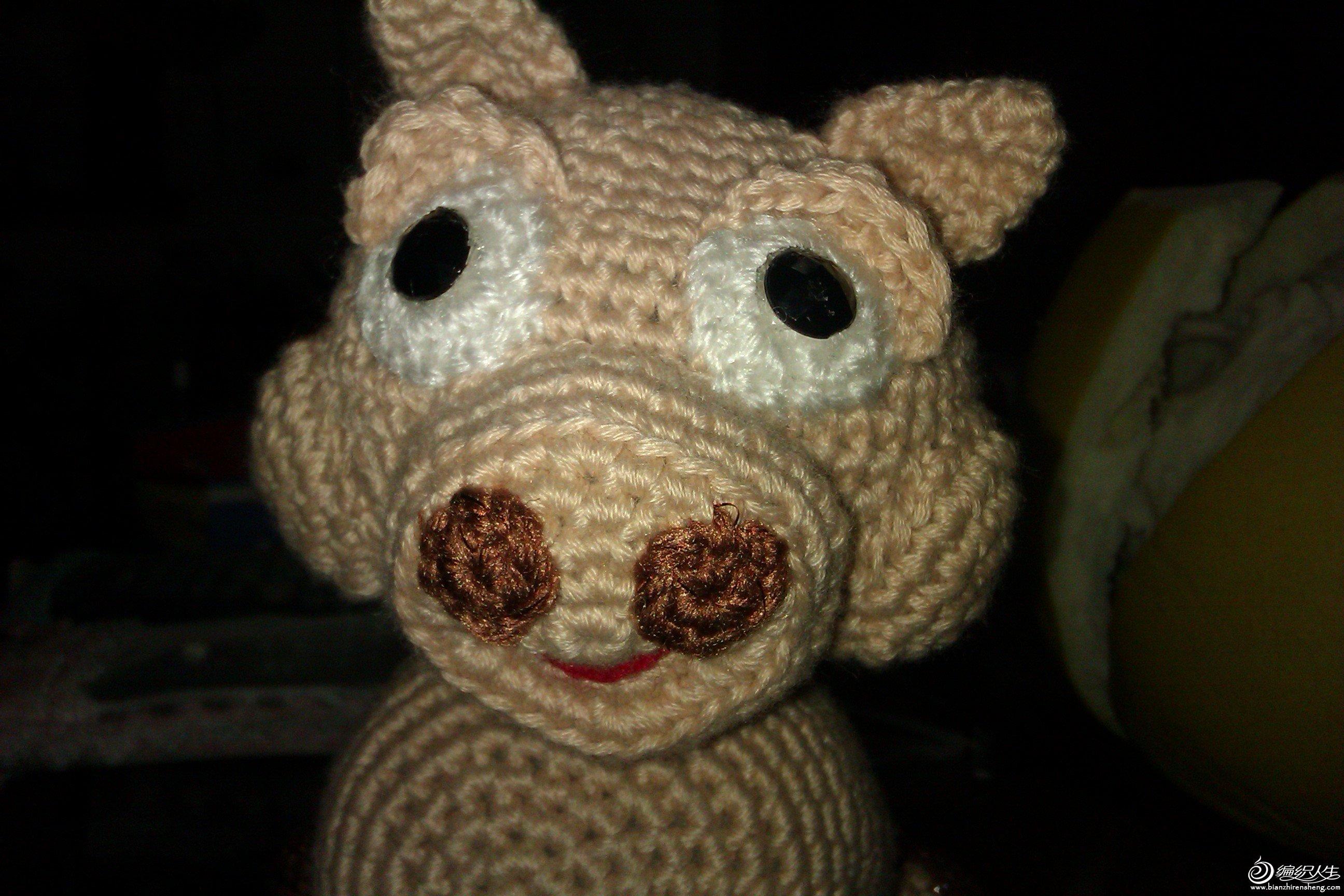 双眼皮的猪1.jpg
