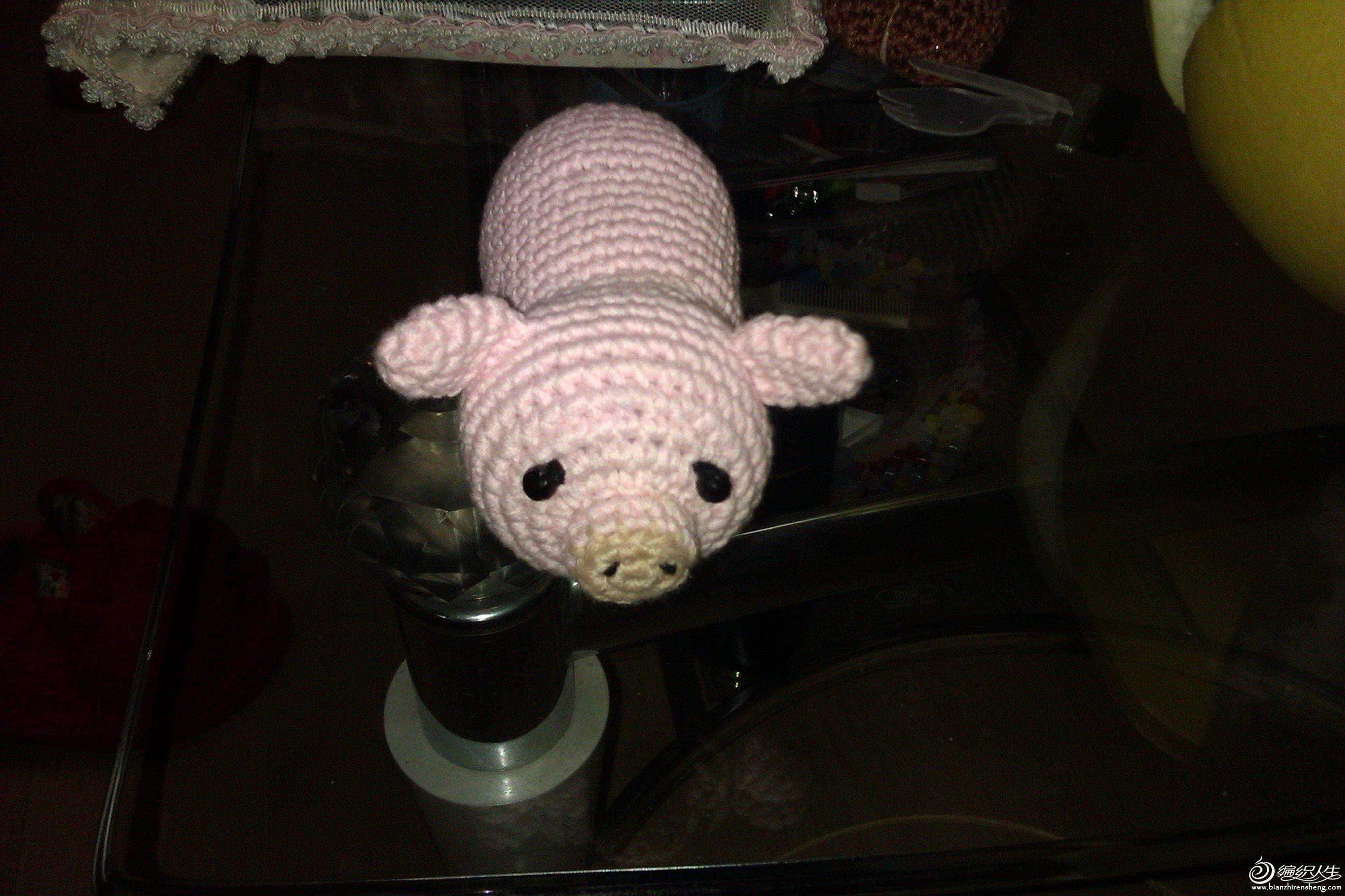 小猪猪4.jpg