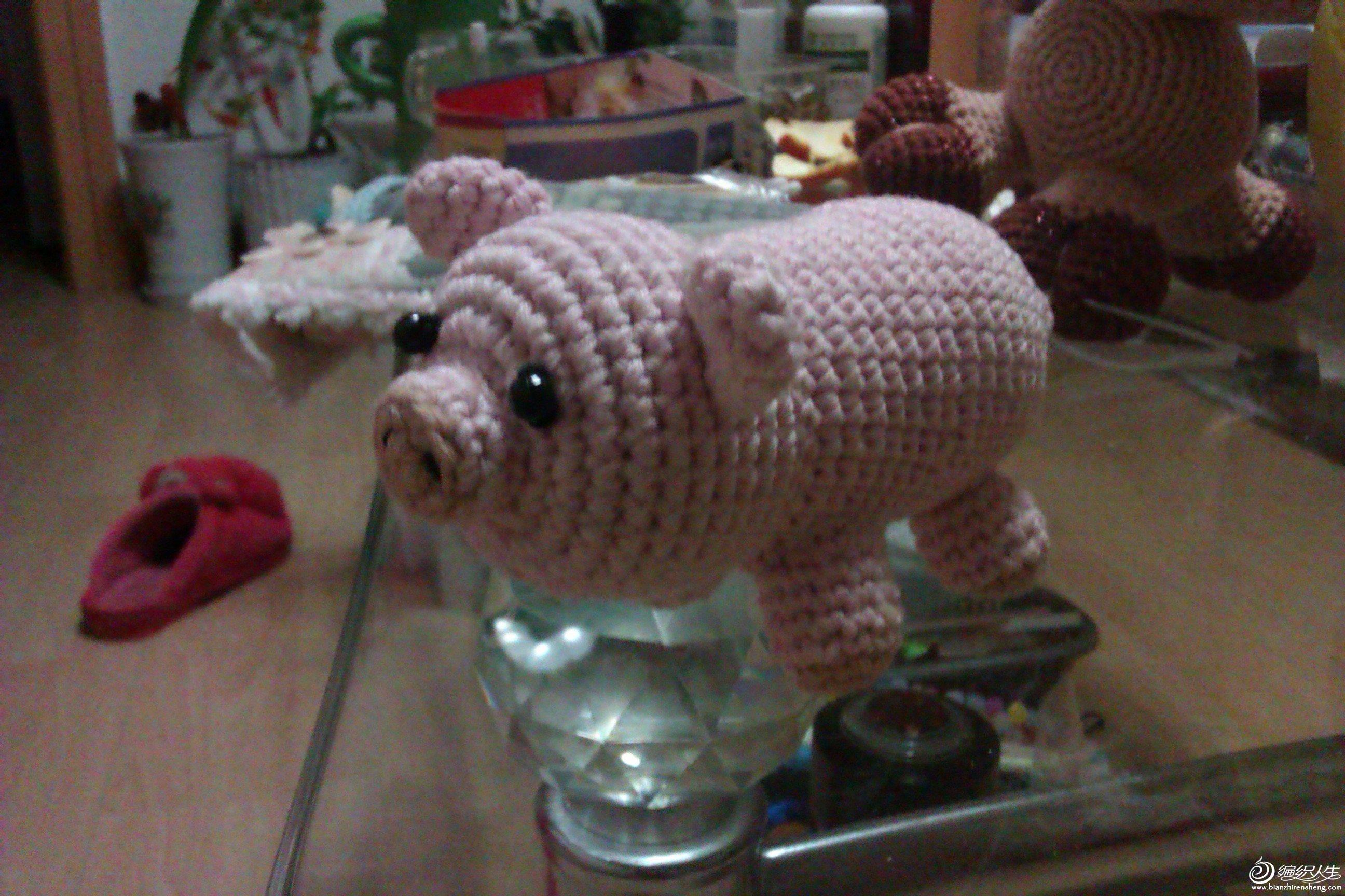 小猪猪5.jpg