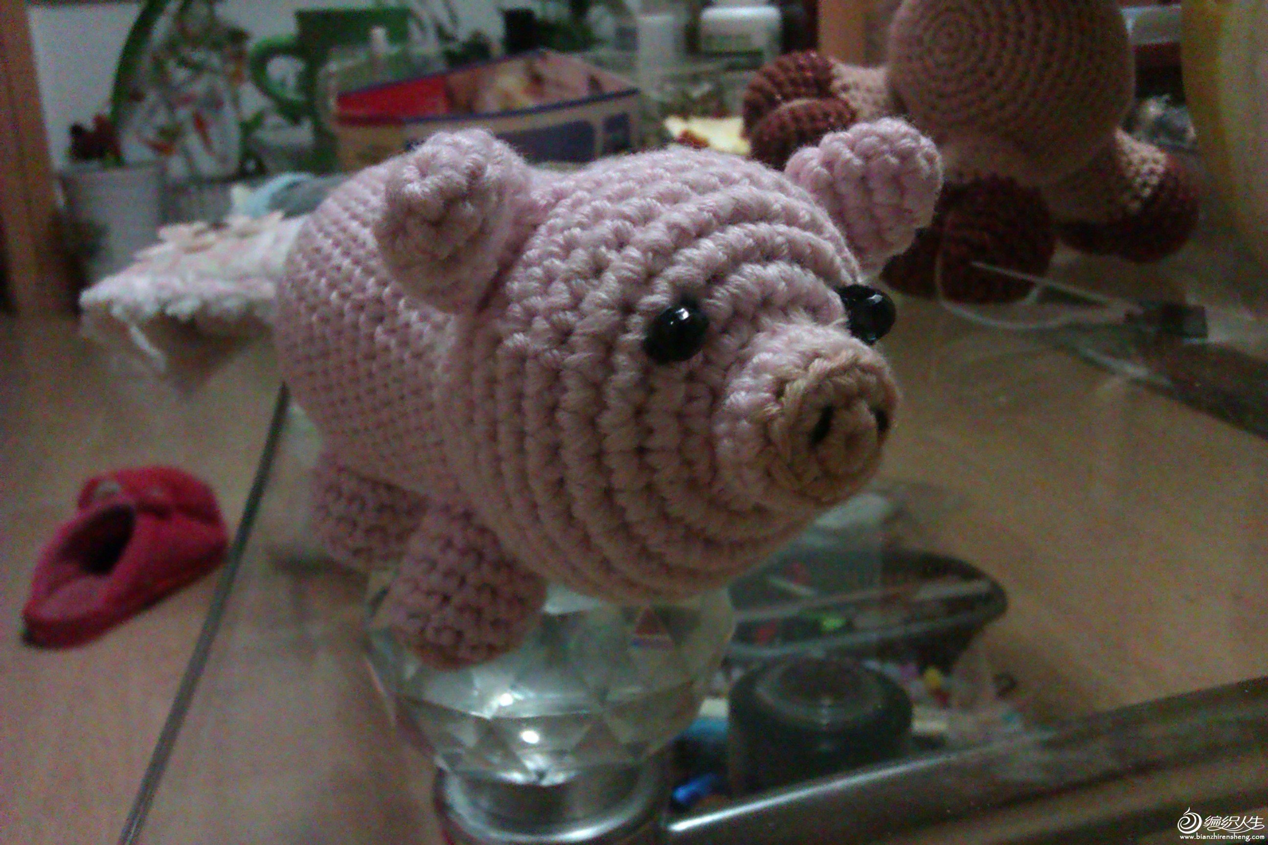 小猪猪6.jpg