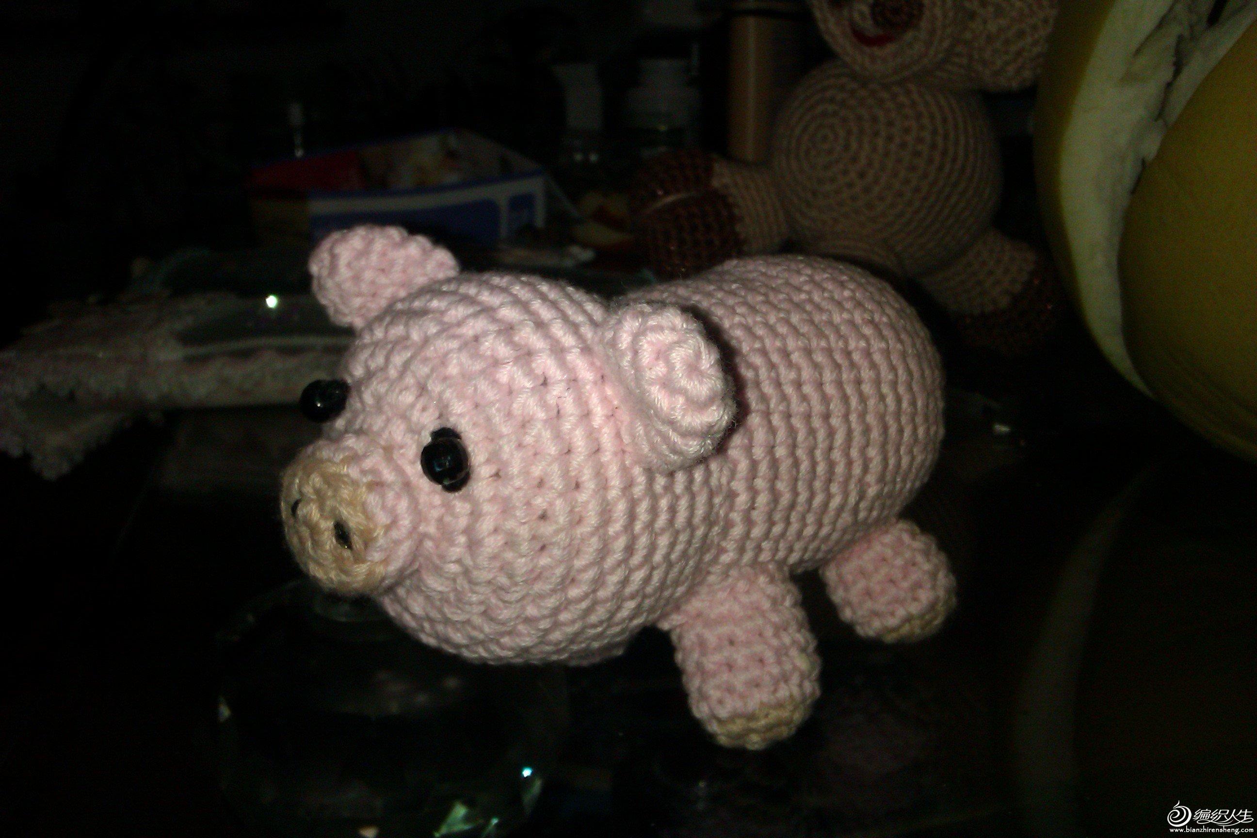 小猪猪.jpg