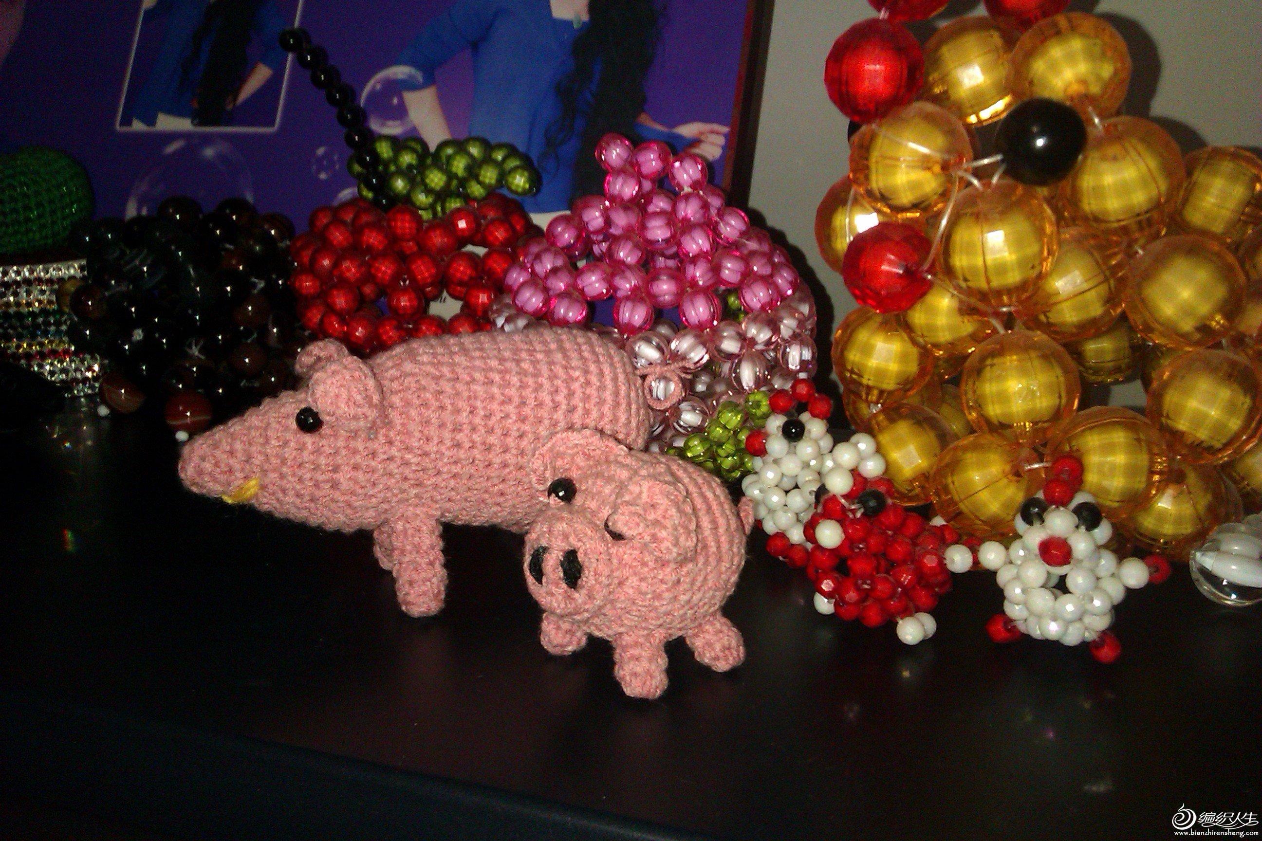 猪2.jpg