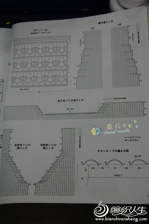 一串红图解2.jpg