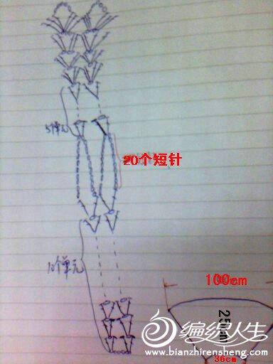 紫色斗篷图解1.jpg