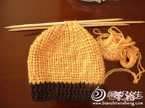 黄加咖帽一.jpg