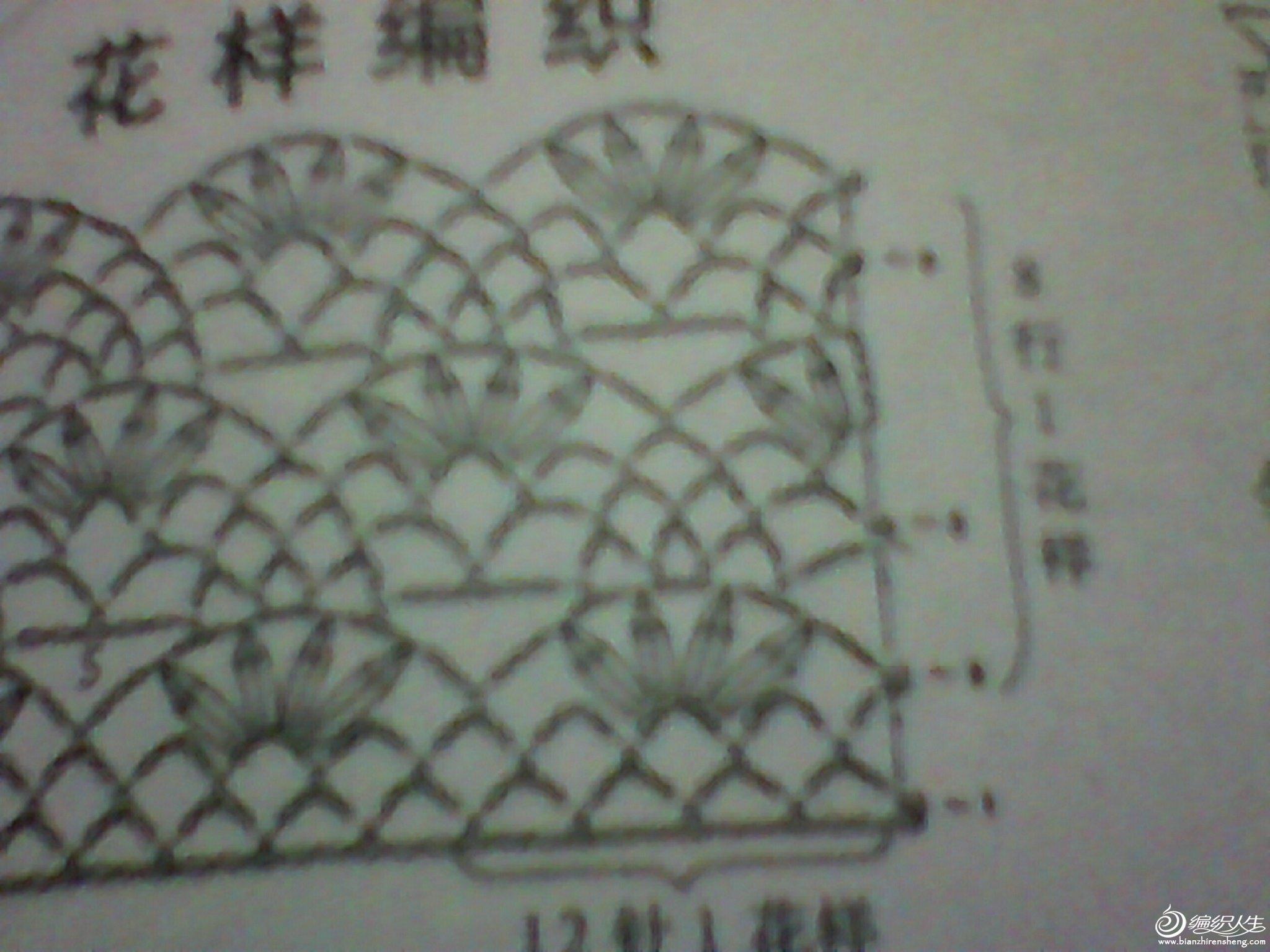 IMG_20121220_134925932.jpg