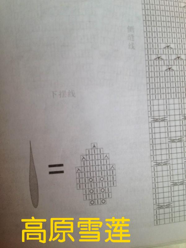 IMG_1197_副本.jpg