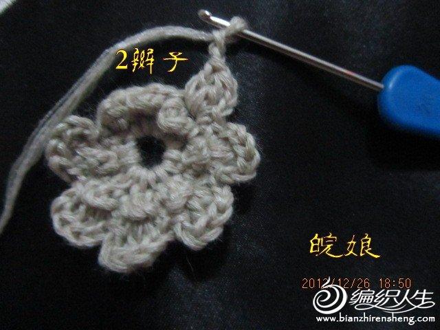 IMG_0025_conew1.jpg