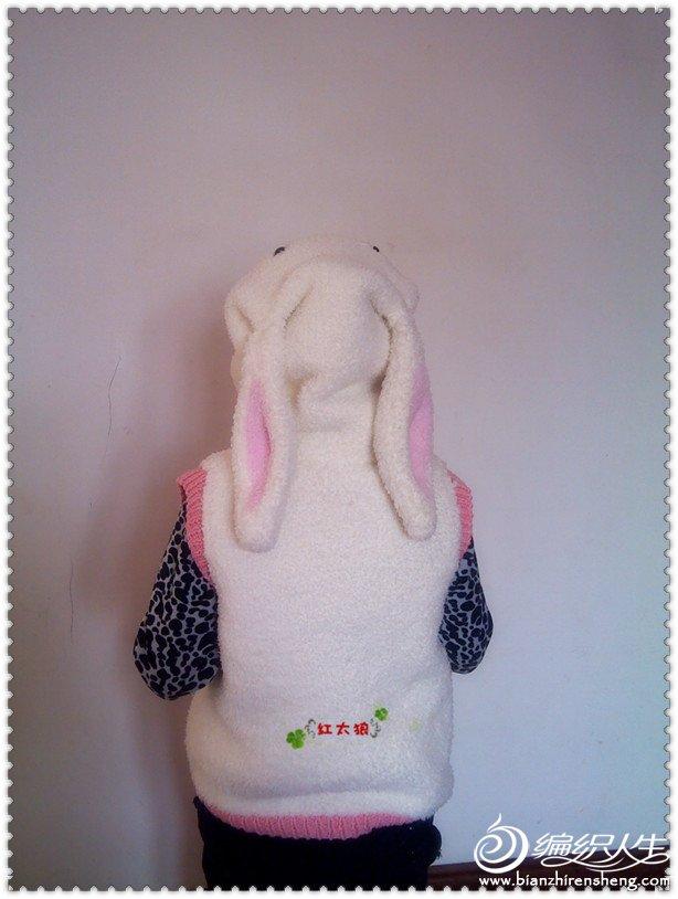 兔衣图片17.jpg