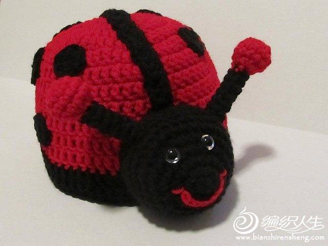 Lady Bug Hat.jpg