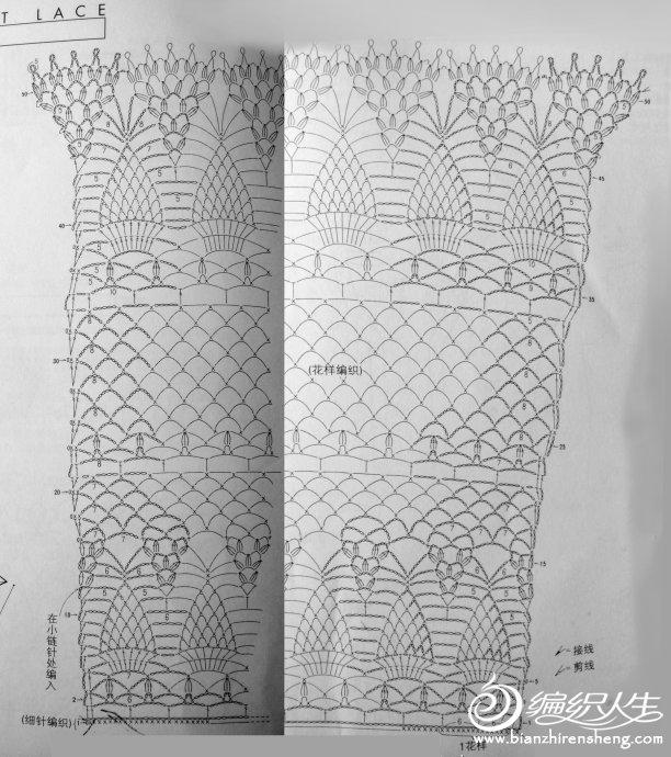 菠萝花围巾.jpg