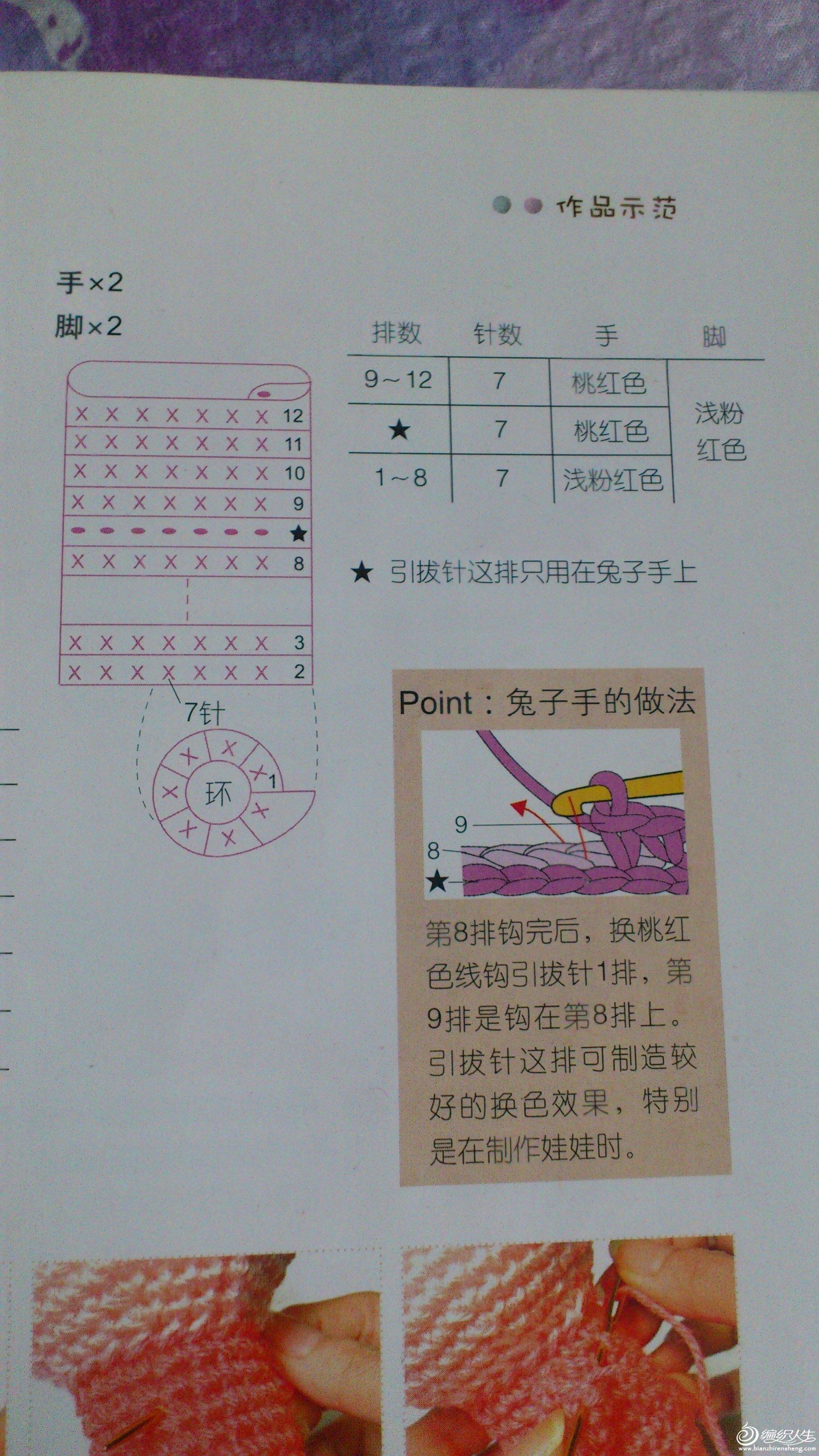 DSC_0420.JPG
