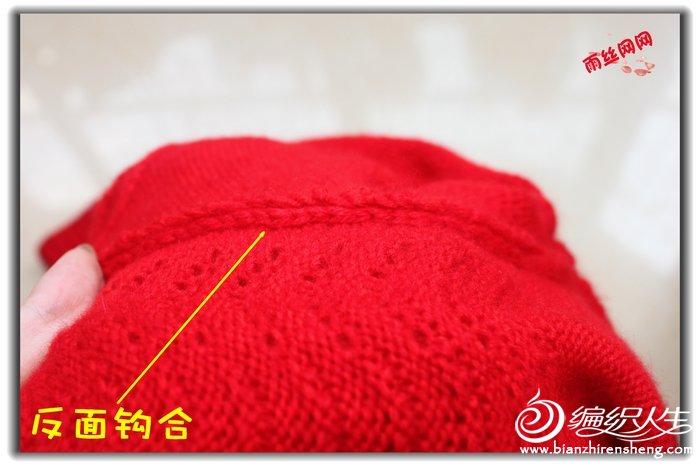 凤尾 (8).jpg