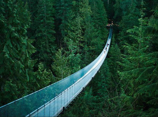 加拿大不列颠哥伦比亚省温哥华的卡普兰奴吊桥: