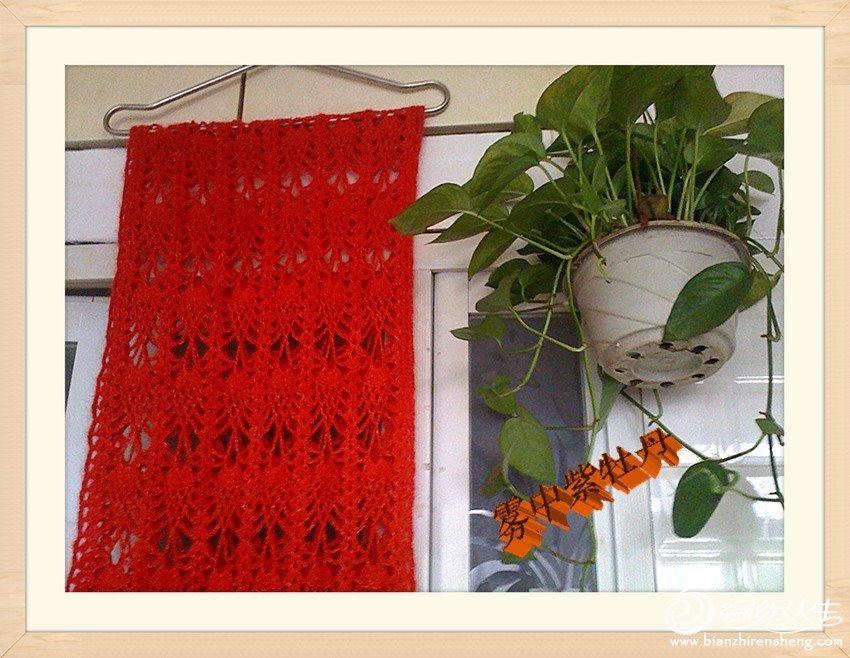 长菠萝花围巾局部图