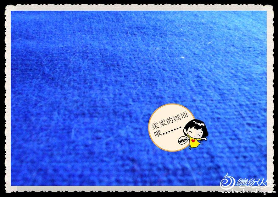 SAM_1609_副本.jpg