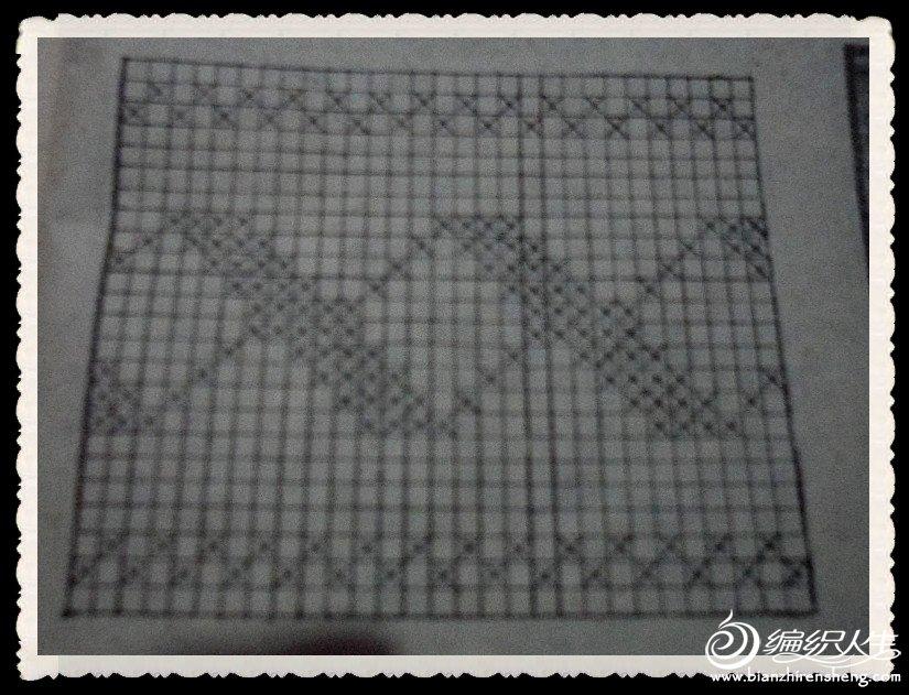 SAM_1621_副本.jpg