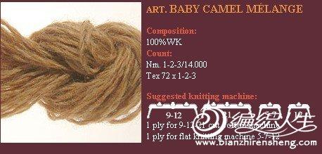 BABYCAMEL.jpg