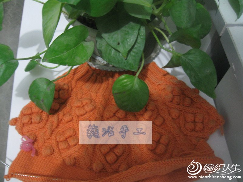 13-01橙豆-01.jpg
