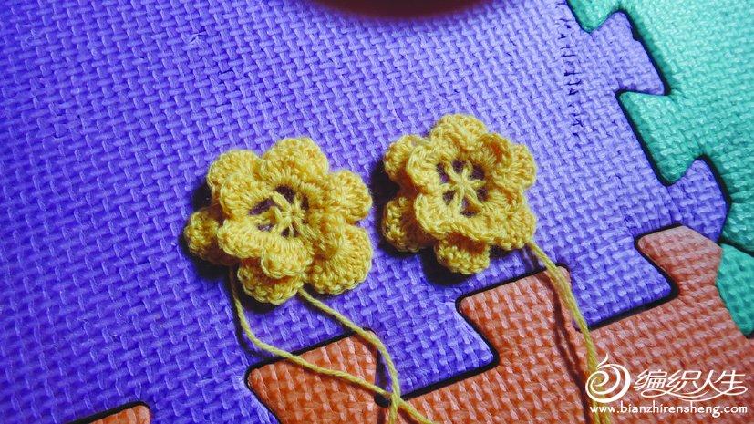 两朵小花排排队.jpg