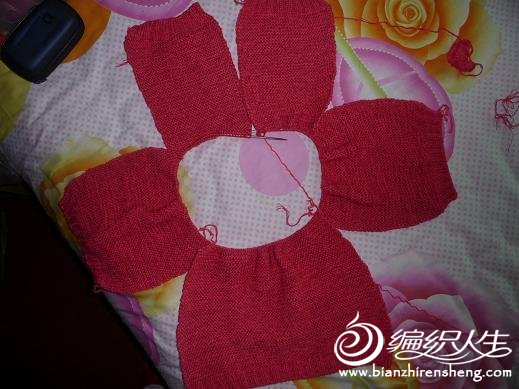 织好的袖子  后片和两前片.JPG