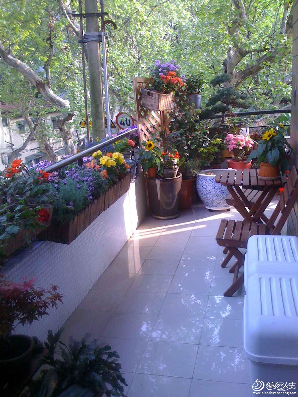 夏季花园1.jpg