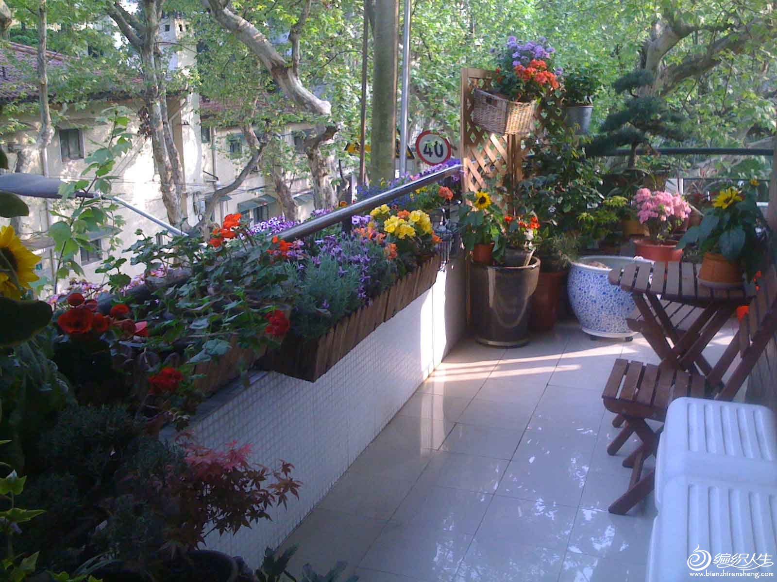 夏季花园5.jpg