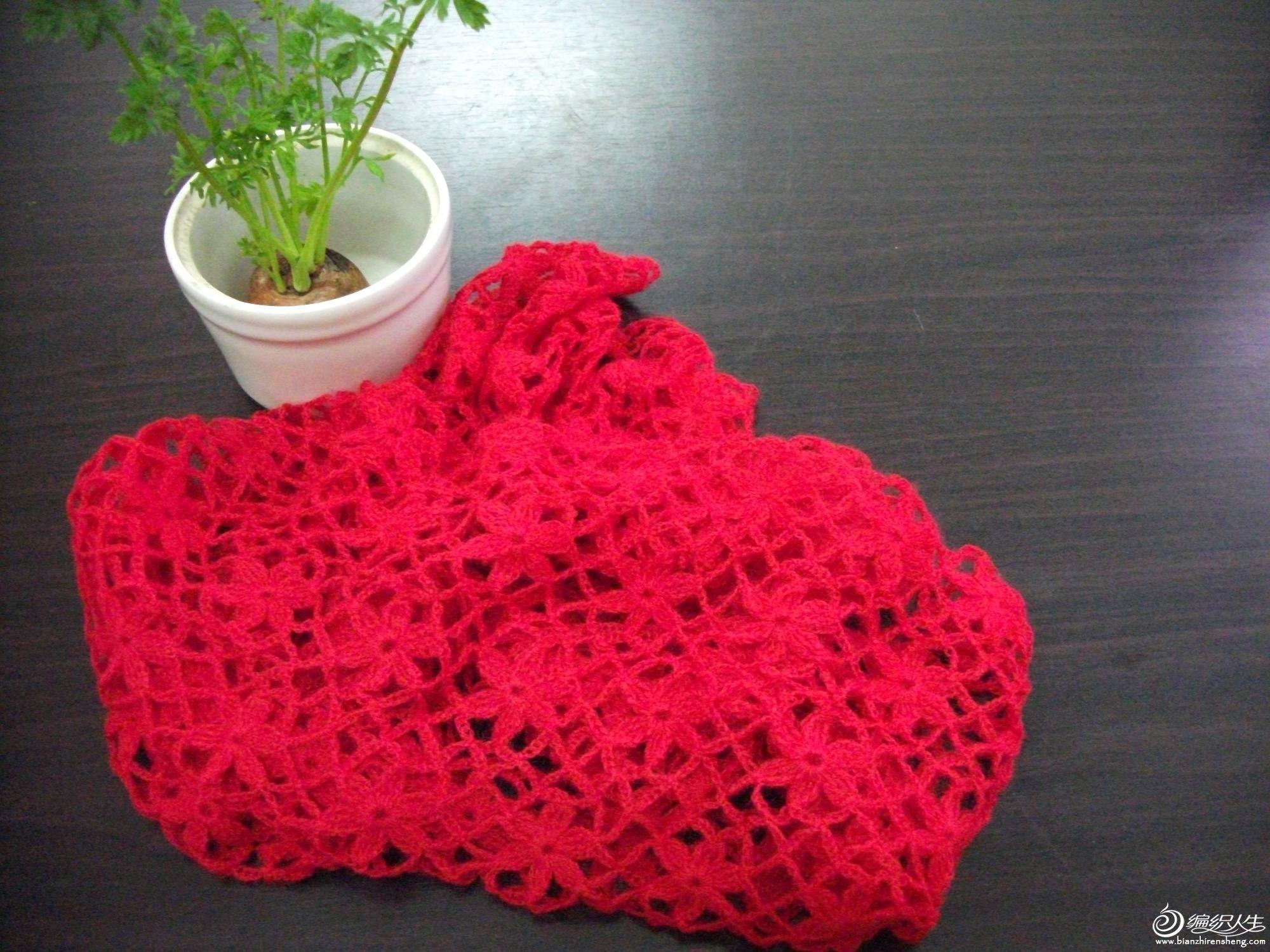 红围巾 006s.JPG