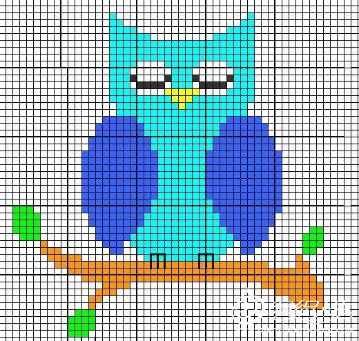 猫头鹰.jpg
