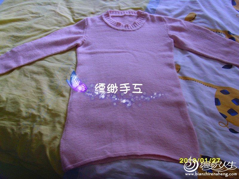 SNV33377_副本.jpg