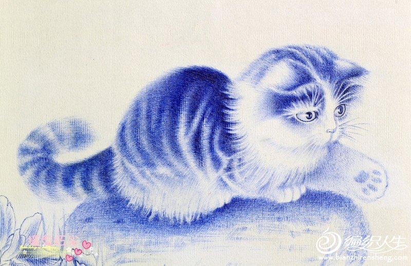 猫2_副本.jpg