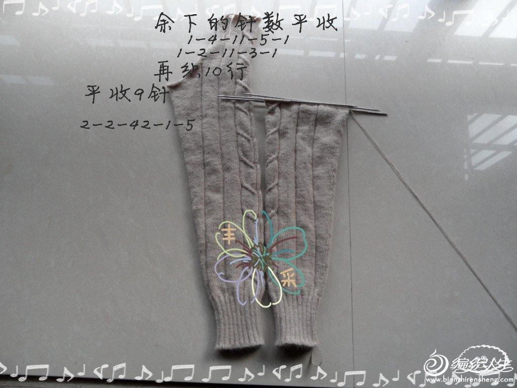 SAM_2764_副本.jpg