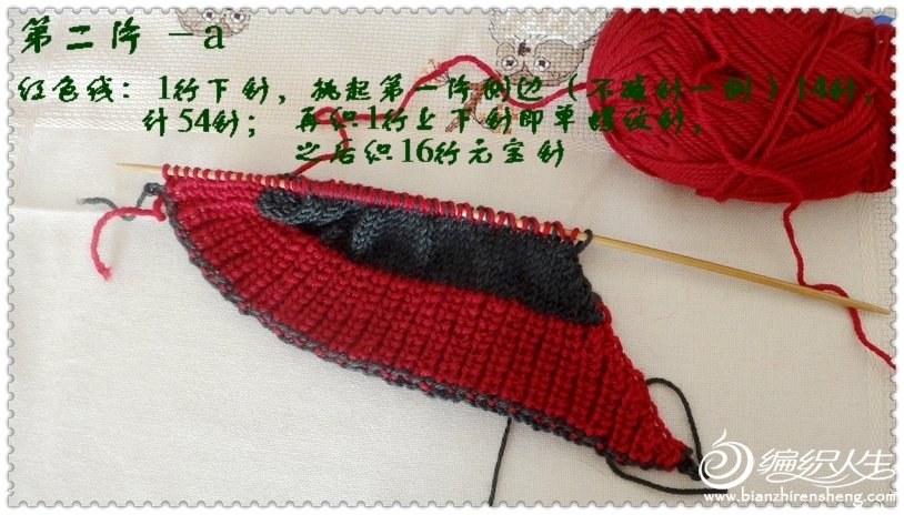 DSC01649-.jpg