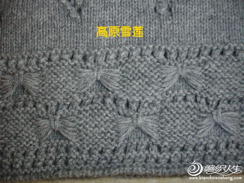 DSC04299_副本丁香2.jpg