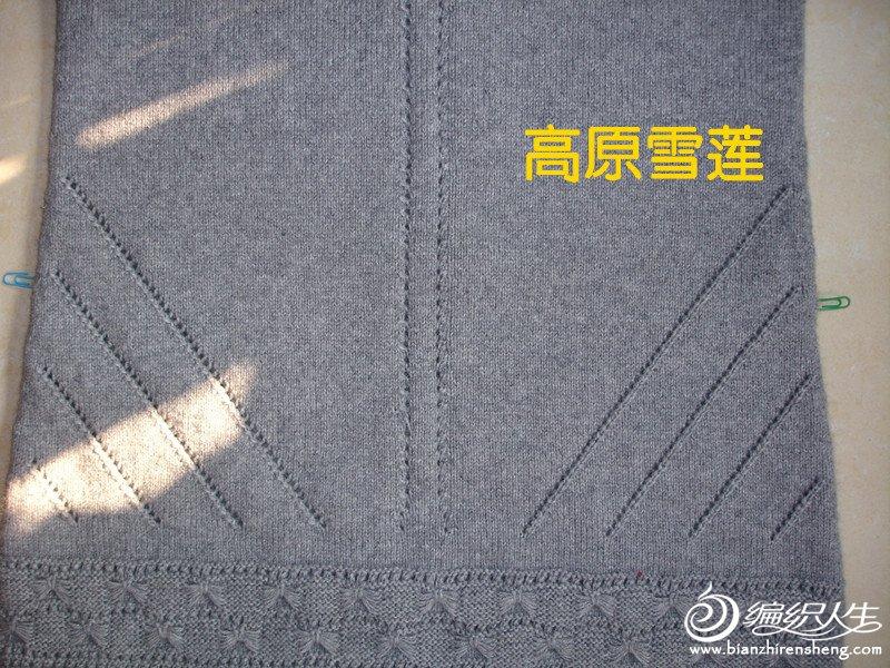 DSC04303_副本丁香5.jpg