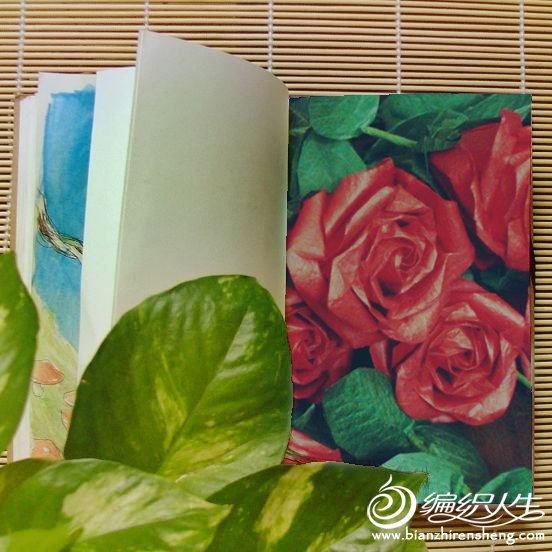 DSC02310_副本.jpg