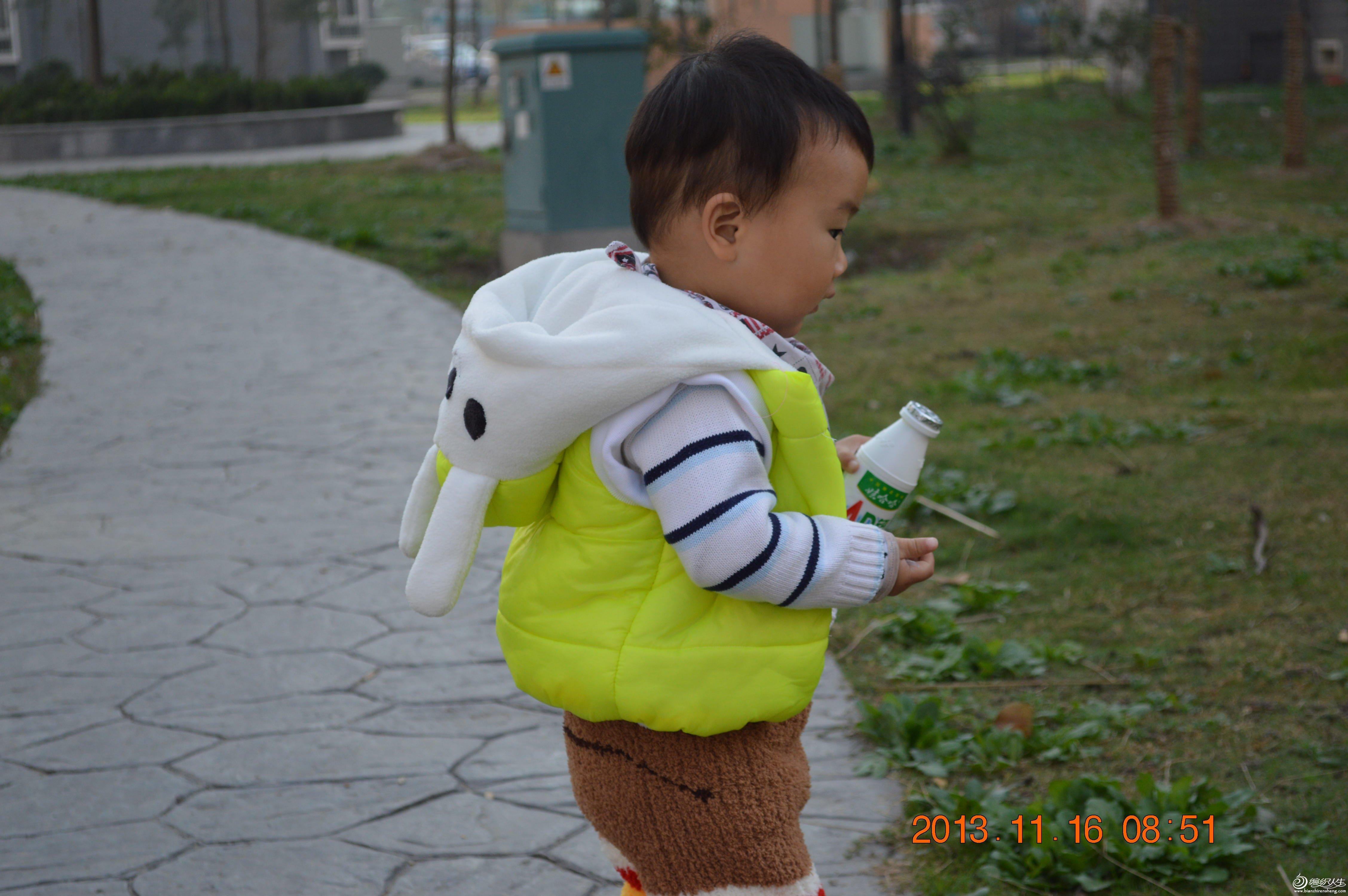 宝宝兔子丝棉马甲(附裁剪图)